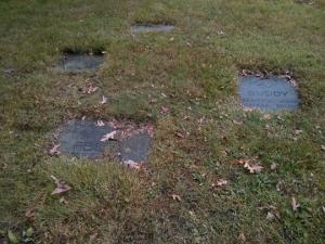 Dog Graveyard_Blog
