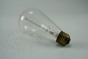Glass etched Edison bulb from 1920, found in Cranbrook House.