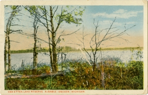 Postcard sent to Leopold friend upon finding Kirkland's warbler. Courtesy Cranbrook Archives