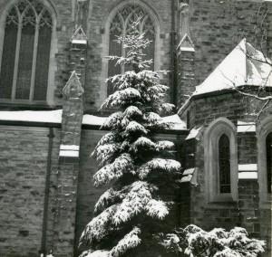 Christ Church Cranbrook, ca 1938.