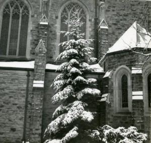 Christ Church Cranbrook, ca 1938.