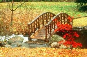 Oriental Garden bridge, Fall 1980. Copyright Balthazar Korab/Cranbrook Archives.