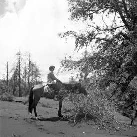 Marcelle R. Hatt on horseback in Mexico, ca 1947.