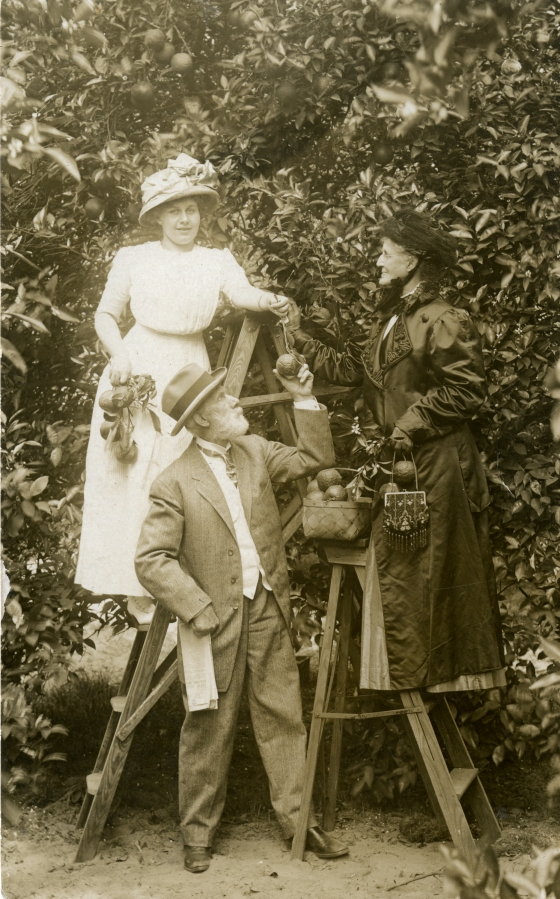 From left: Grace Ellen Booth, Henry Wood Booth, Clara Gagnier Booth picking oranges at Garnett's Orange Grove in St. Augustine, Florida, 1911. Photo by Lewis W. Blair.